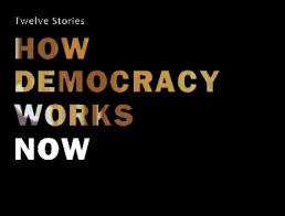 How Democracy Works Now