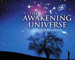 Awakening Universe