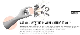 Are You Investing in What Matters to You