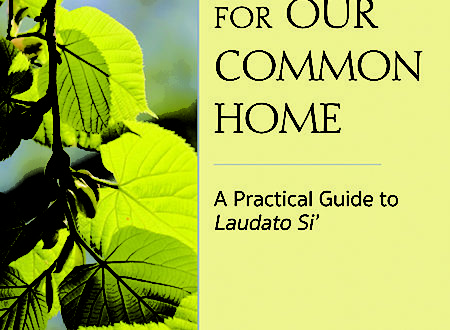 Caring for Our Common Home, A Practical Guide to Laudato Si